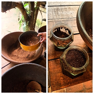 Final Luwak Coffee - Guide To Luwak Coffee Bali