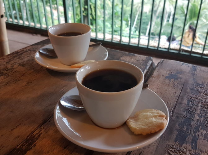 Luwak Coffee Bali - Everything You Need To Know About Luwak Coffee