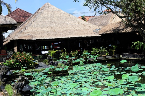 Lotus Pond at Pura Taman Saraswati Temple Ubud