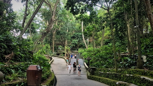 Paved Pathways at Ubud Monkey Forest - Guide to Ubud