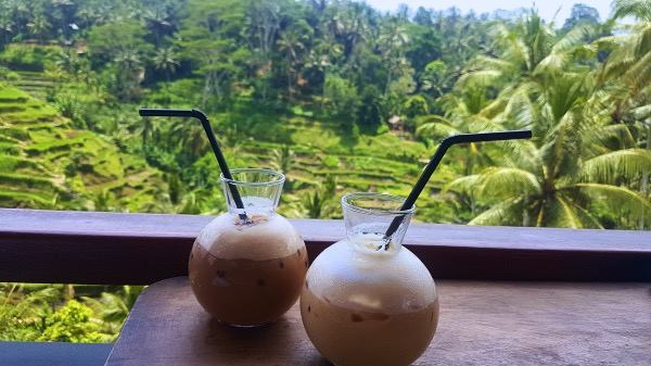 Tegallalang Rice Terrace Coffee Shop