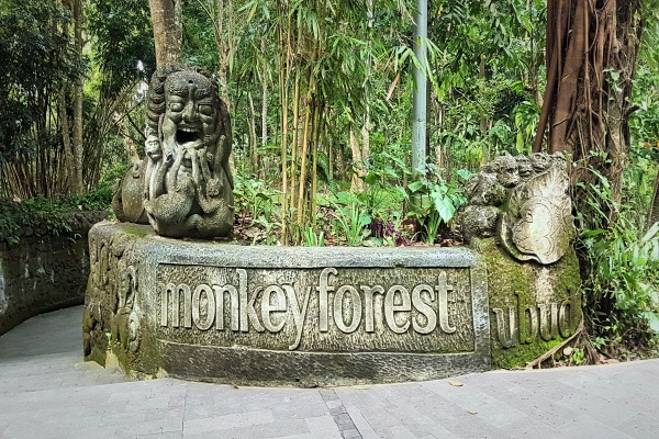 Ubud Monkey Forest - Detailed Ubud Travel Guide