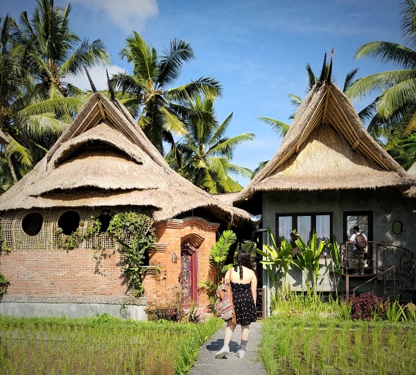 Firefly eco apartment - Places to stay in Ubud