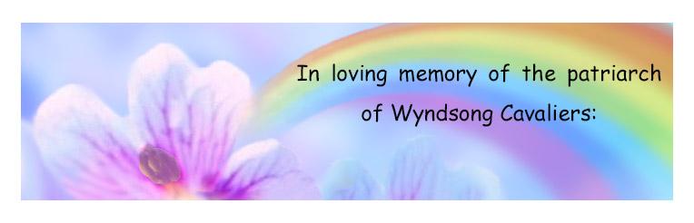 ~lineage in memory of Sherlock rainbow