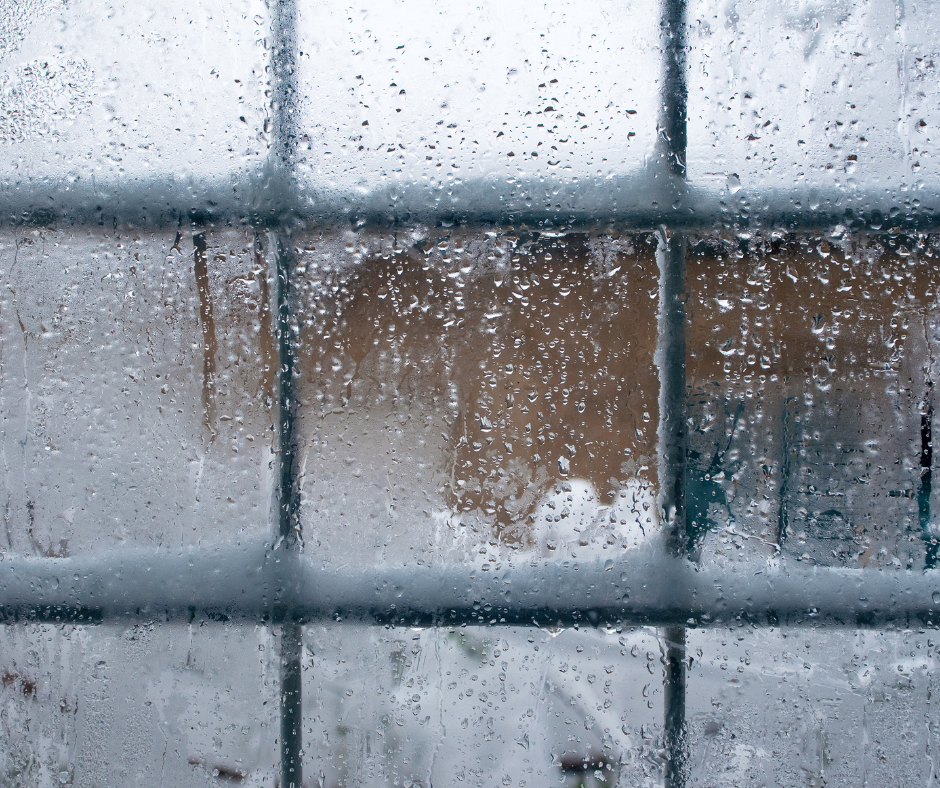 How SLIP can Protect Your Windows from Snowfall Damages