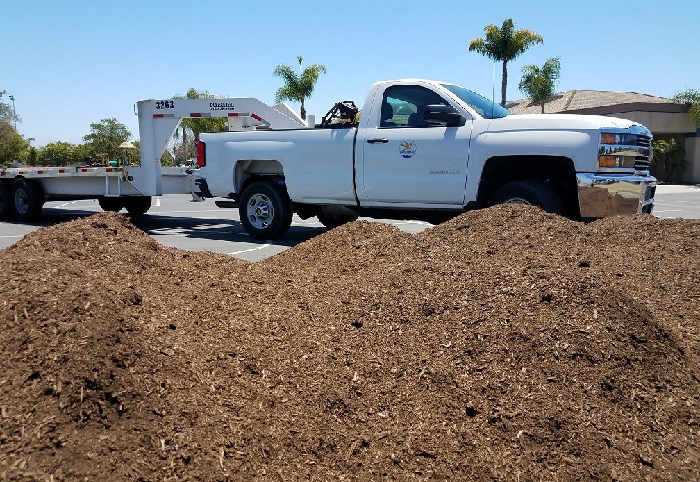CUSD finds natural ways to control weeds, pests on campuses