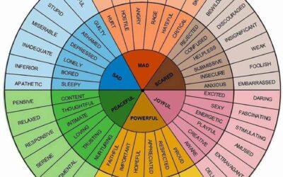 AFT & Feelings Wheel