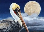 Moonlight-Pelican-8x10-Louisiana-art-camille-barnes