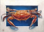 crab2_Painting WEB