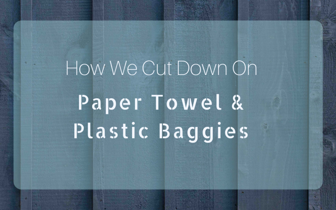 How To Give Up Paper Towels & Plastic Bags