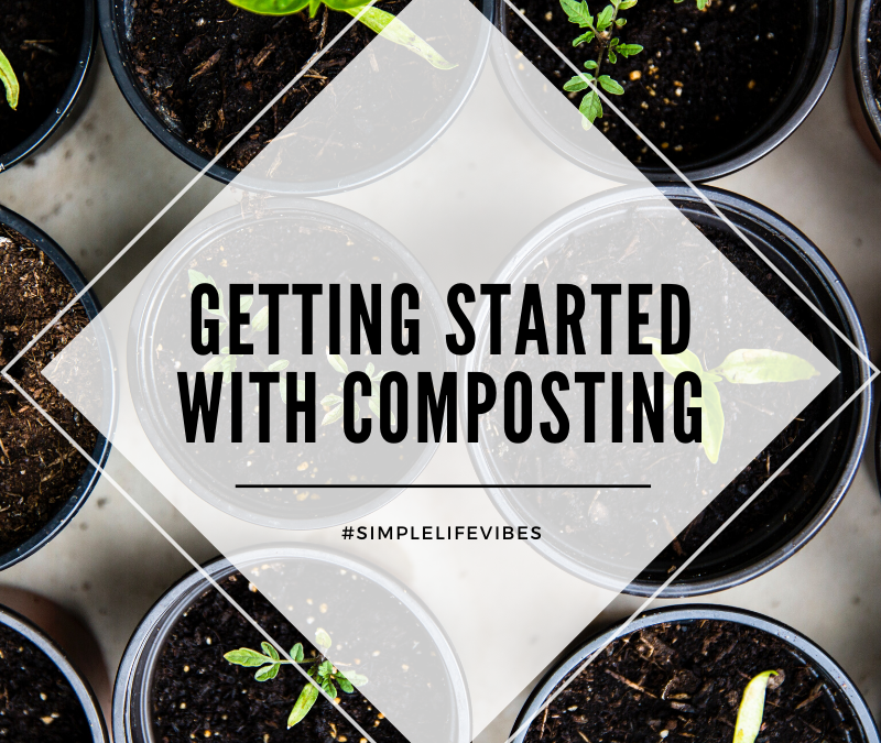 What You Can Compost: A Simple Guide