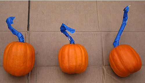 blue taped pumpkins