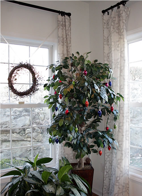 holiday faux ficus