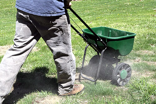 action shot of ironite in an over spreader