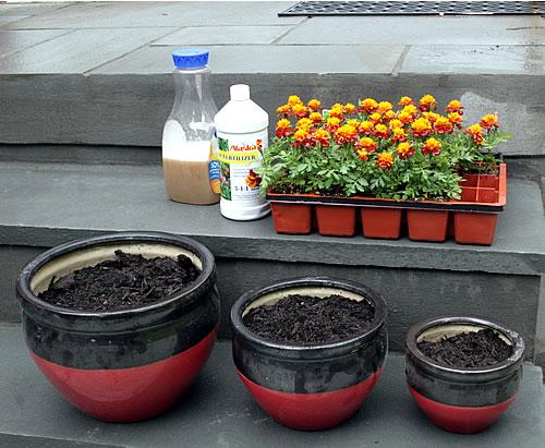 The Secret to Healthy Plants: Organic Fertilizer
