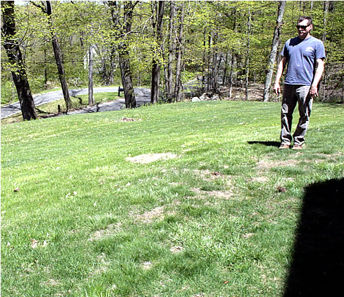 neglected lawn