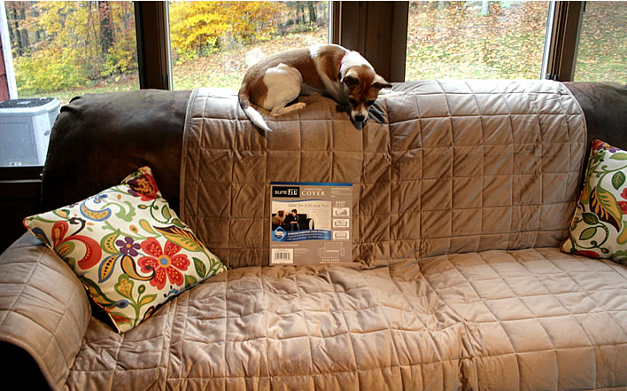 surefit sofa pet cover