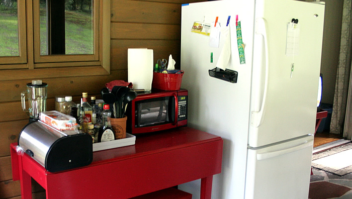 Practical Survival Tips for a Kitchen Renovation