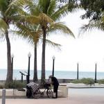 Happy Beach Bikes in Key West