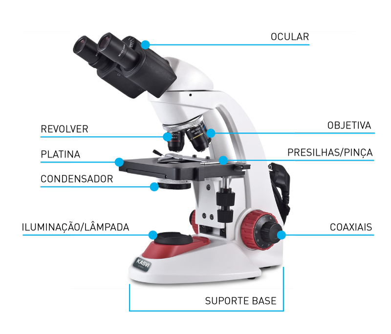 Componentes de um Microscopio