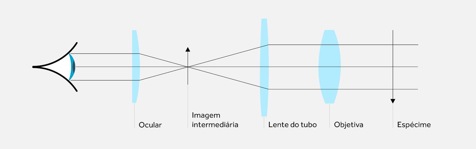 Sistema Óptico Infinito