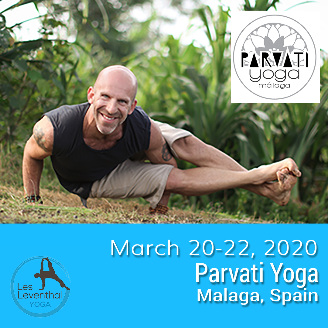 Les Leventhal Yoga Workshops & Events