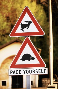 turtle-sign-195x300