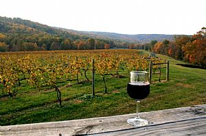vineyard with wine glass in foreground