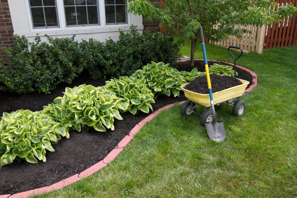 Flowerbed with hostas