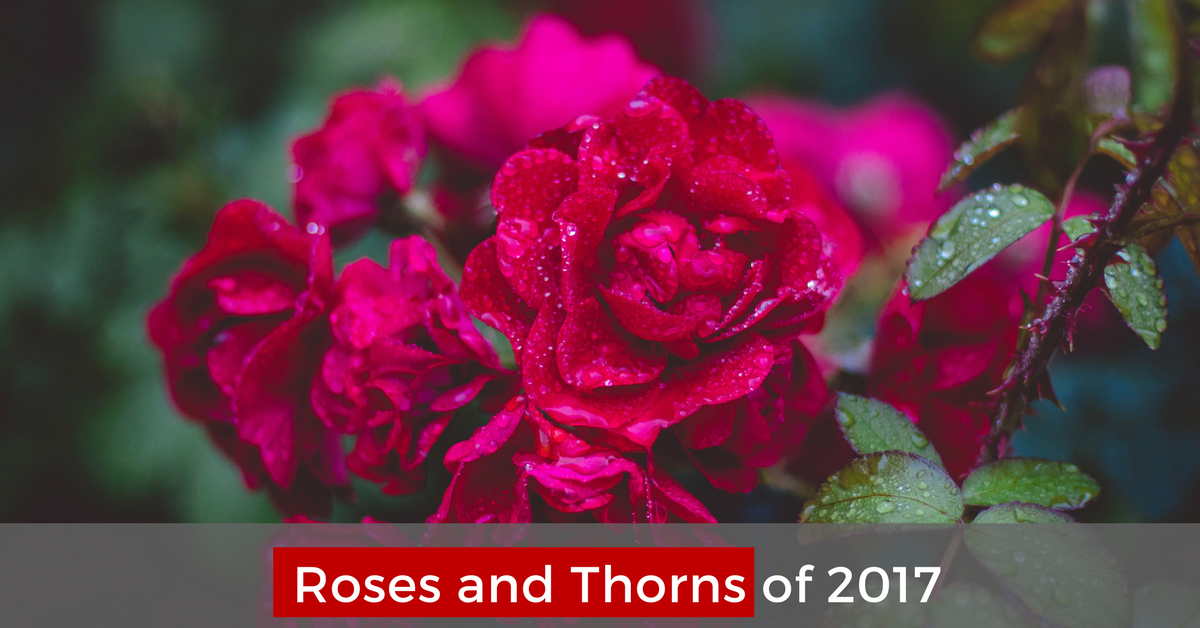 Roses And Thorns Of 2017