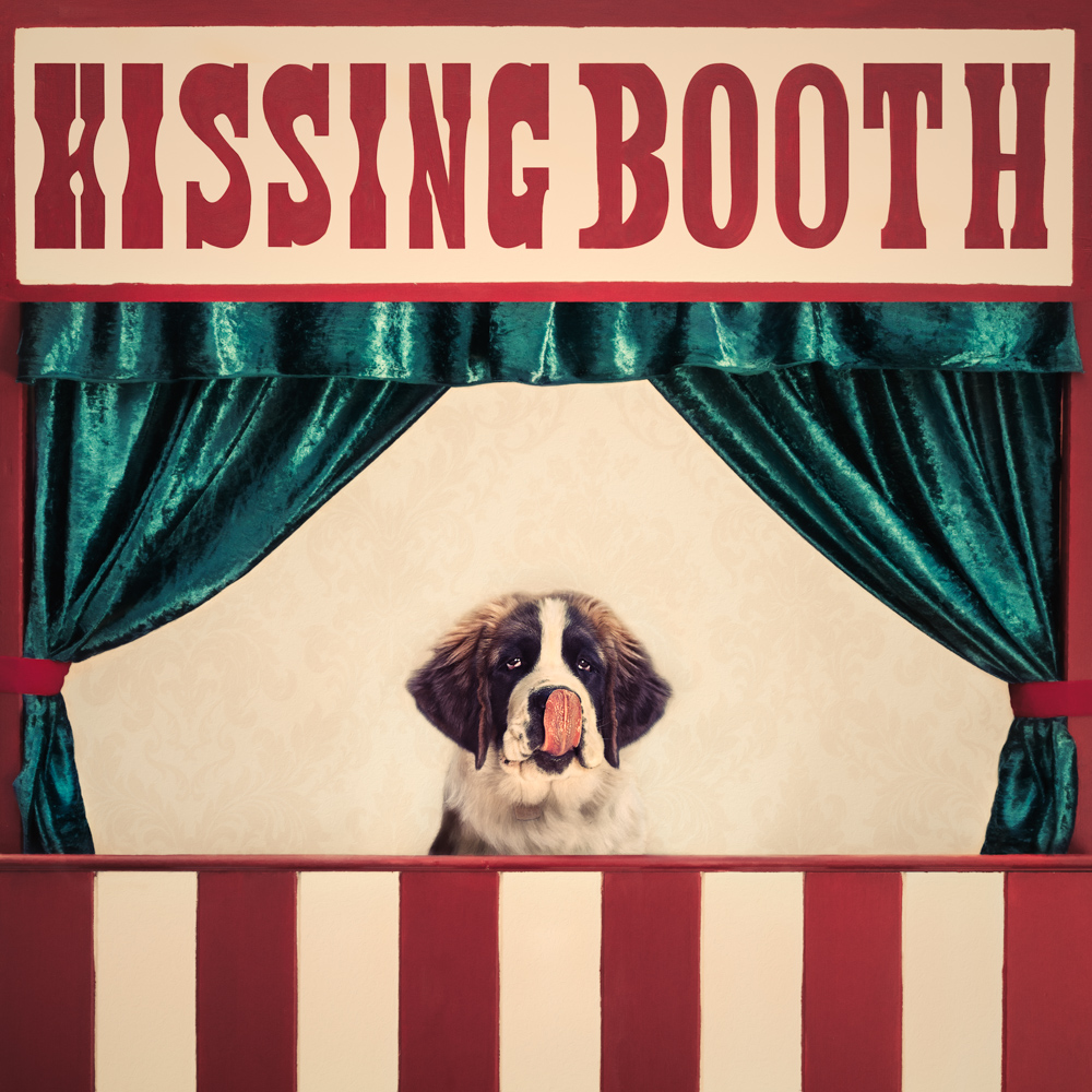 Saint Bernard puppy in a kissing booth lick his nose
