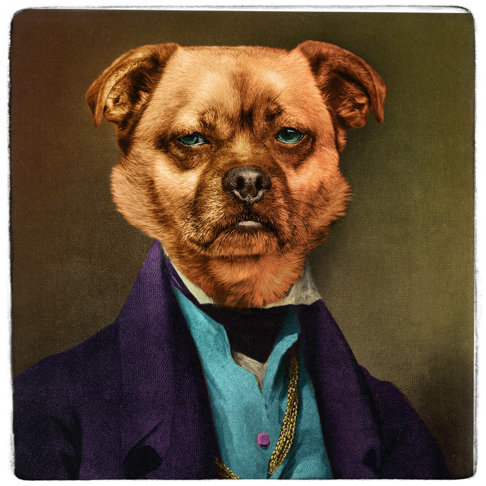Dog head imposed into a vintage photo