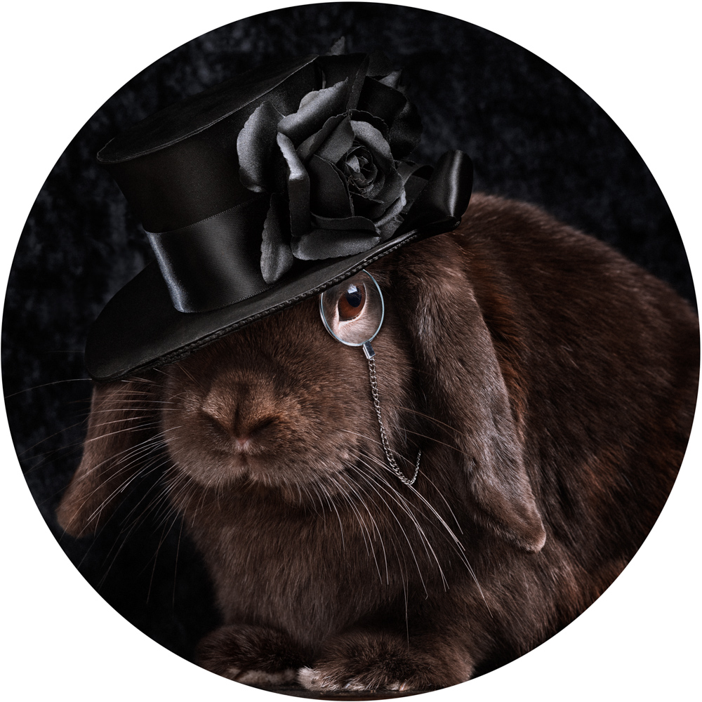 brown rabbit wearing a top hat and eye piece