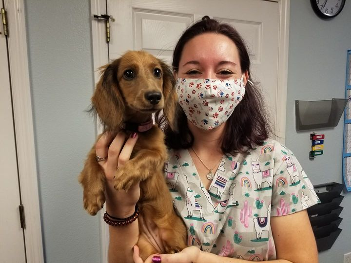 Grant Animal Clinic Current COVID-19 Protocol Update
