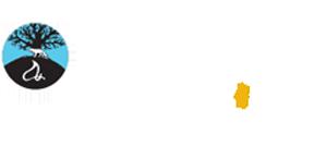 Foxwoods Casino Logo White