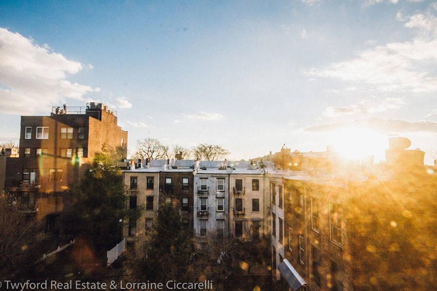 Brooklyn-Backyards-4