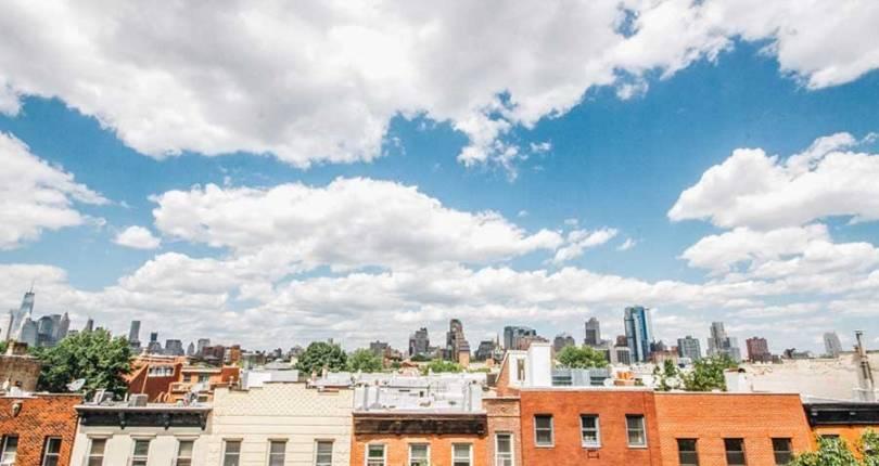 Our Brooklyn Backyards