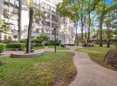505 Court St courtyard