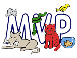 Most Valuable Pets | Lexington's Local choice for your MVP!