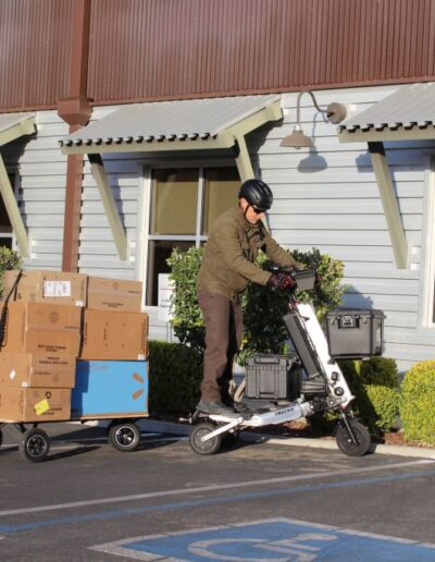 Microtransportation-delivery1
