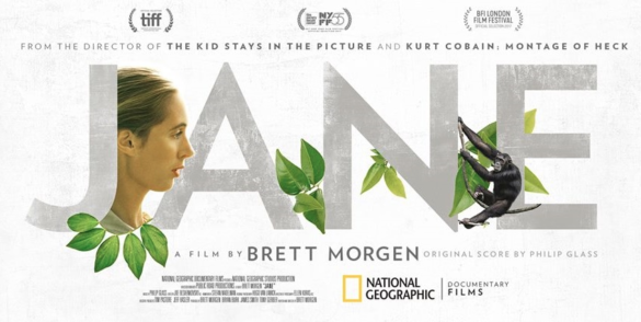 Movie Review: Nature aligns us all in the documentary 'Jane'