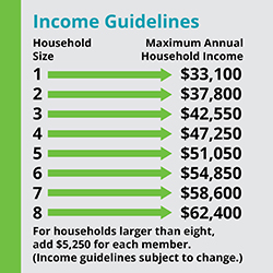 income guidelines example