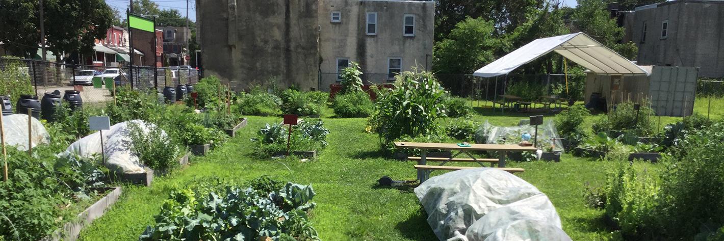 community gardens slider 5