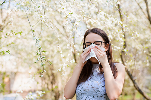 Seasonal Allergies Get Tested