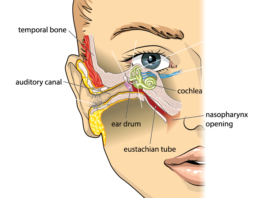 Eustachian Tube Dilation Houston