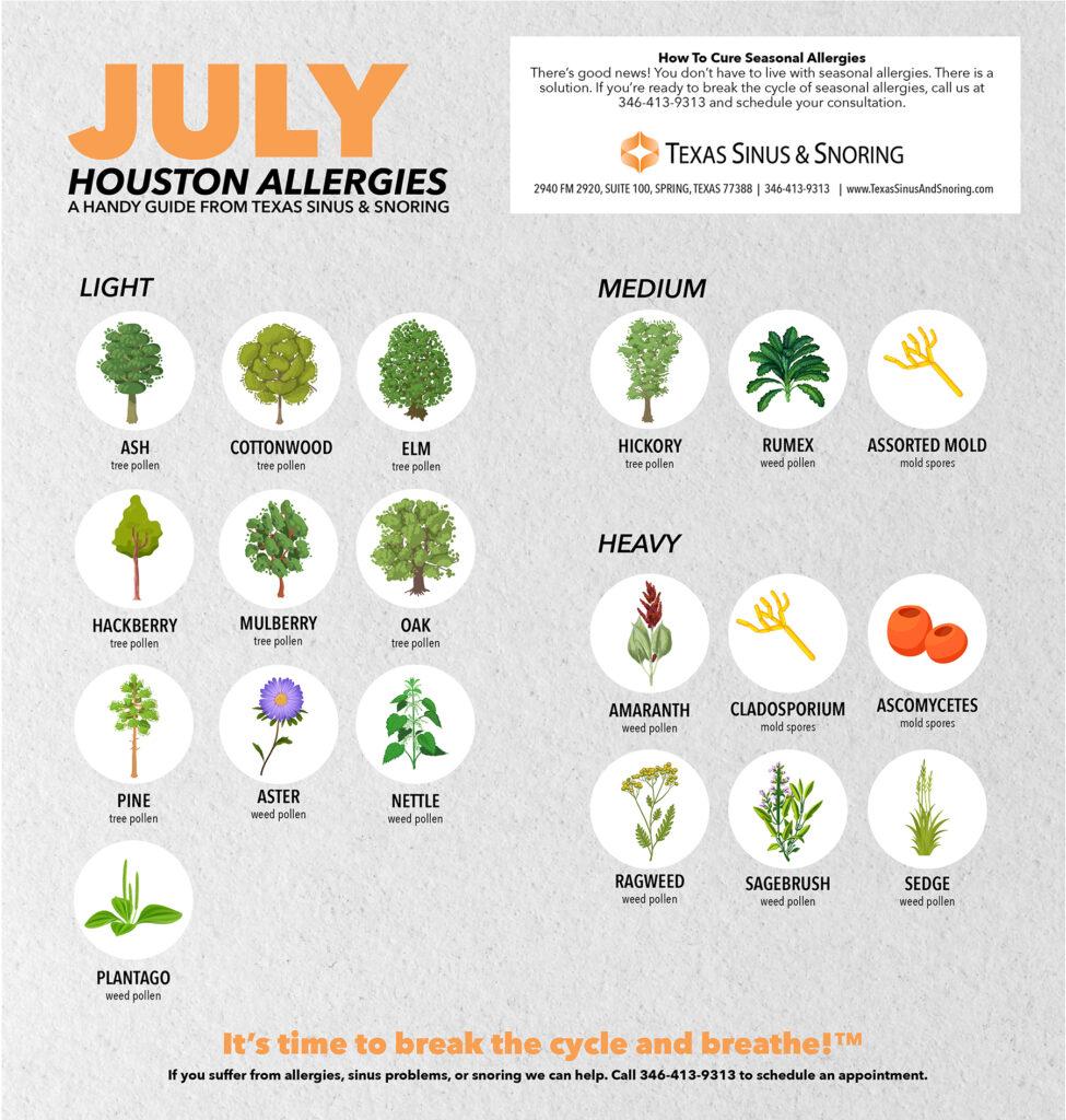 Houston July Allergies