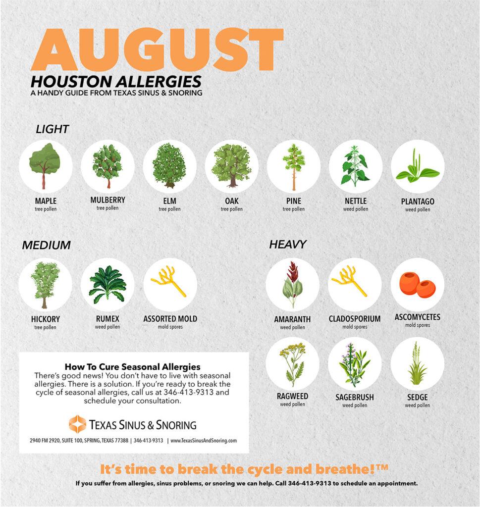 August Allergies in houston, Houston Allergist