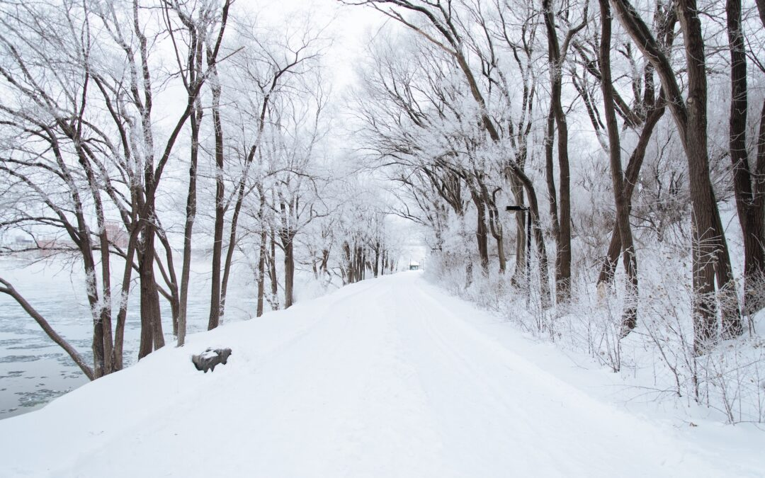 NWIM Clinic Snow Policy