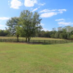 The farm offers a beautiful backdrop.