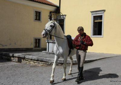 Lipica Horse Farm, Slovenia